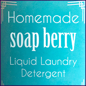 Homemade Soap Nut Liquid Detergent