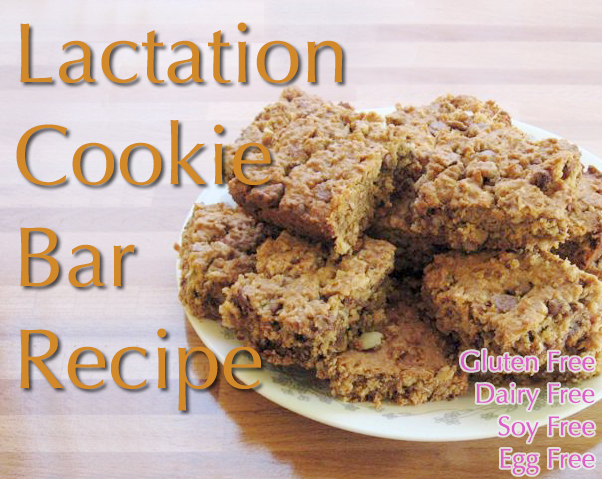Lactation Cookie Bar Recipe - in a traditional & allergen friendly version! These are so good.
