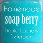 DIY_Liquid_Soap_Nuts_Detergent