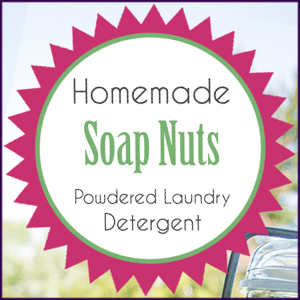 Homemade Soap Nut Powedered Detergent