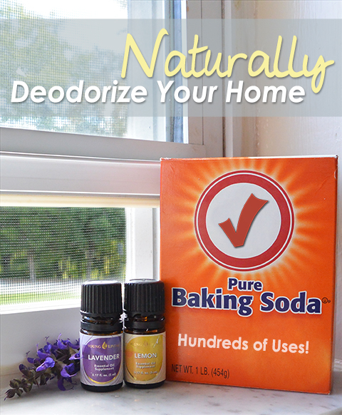 Naturally Deodorize Your Home
