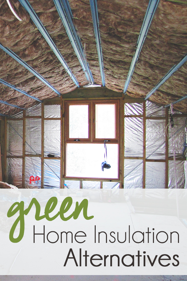 Green home insulation alternatives for Eco friendly house insulation