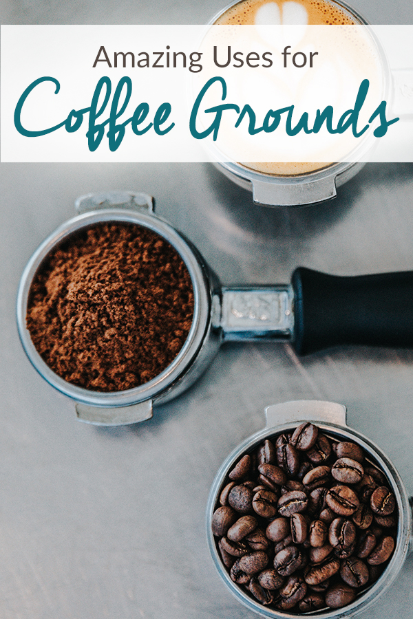 "Three espresso portafilters lined up. One filled with beans, one filled with grounds, and the final one filled with a shot of espresso and milk designed to look like a tiny latte. Over the image are the words ""Amazing Uses for Coffee Grounds"""
